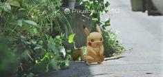 Un jeu mobile immersif qui vous propose de capturer les Pokemon en réalité augmentée