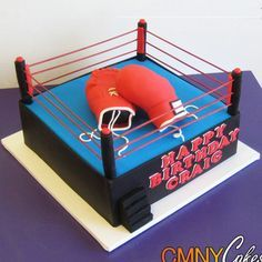 Craig's Boxing Gloves in Ring Cake
