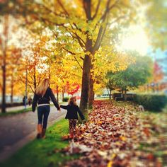 A beautiful autumn day in Vancouver, BC    mobile photography by NikNaz K.