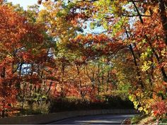 Enjoy autumn by taking a ride along one of these scenic routes.
