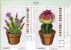 Schema punto croce Cactus