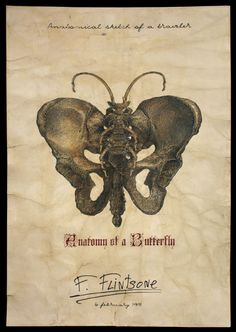 Anatomy of saber-toothed Butterflies  That was a real shakespeare drama, when ross heller begged me to give him this little prehistoric souvenir from flintstones family. This mad paleontologist offered me photos of his sister in teenage years, money,...