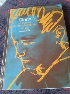 Giono, le roman, un divertissement de roi d'Henri Godard (source FB) (photo: Saskia Boulandet)