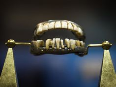 George Washington's only complete set of dentures, made out of lead, human teeth, cow teeth and elephant ivory.