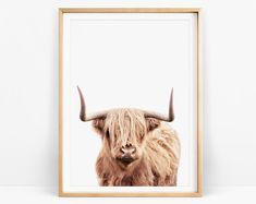 Highland Cow Print Farmhouse Kitchen Decor Rustic Country | Etsy