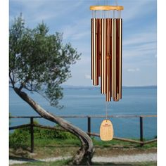 Chimes of Jerusalem by Woodstock Chimes makes a beautiful and mysterious ringtone, and it's free! Free Ringtones, Jerusalem, Suncatchers, Woodstock, Mysterious, Wind Chimes, Crystals, Outdoor Decor, Beautiful