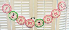 Ladybug Banner - Pretty in Pink Ladybug High Chair Banner - 1st Birthday - Party Decorations - 10 Candles Original Design