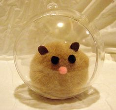 Hamster in a ball!