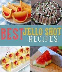 Need New Years Eve Party Ideas? Best Jello Shot Recipes | 15 Unique DIY Recipe Ideas for Creative Jello Shots http://diyready.com/best-jello-shot-recipes-unique-recipe-ideas/