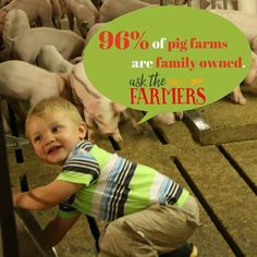 of pig farms are family owned.
