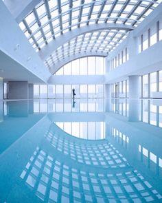 just love reflections and aquatic environments