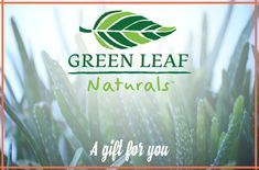 Gift Card | Green Leaf Naturals Green Leaves, Nature, Cards, Gifts, Products, Naturaleza, Favors, Playing Cards, Presents