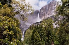 "Eight must-see national parks waterfalls. Learn more about these and other great trails in ""Best Sights to See at America's National Parks"": http://www.amazon.com/Sights-Americas-National-Parks-Hittin-ebook/dp/B018W7Y288"