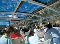 Imagen interior del Escua, cubierta de cristal con interior climatizado, para poder disfrutar del Crucero Ambiental en cualquier época del año, ya que cada una tiene una atractivo diferente