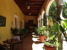 Pictures of La Casa De Los Patios Hotel and Spa, Sayula - Traveler Photos - TripAdvisor