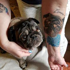 #Pug #Ink with @sonjagaouaoui! TAG a #puglover . . . #pugpower #dogs #pugsnotdrugs #pugpuppy #puglove #cuteness #pugs #pugnation #dogstagram #dogsofinstagram #puppyeyes #pugstagram #pugworld #pugplanet #petstagram #instadog #instapug #babypug #pugsofig #pugsforever #pugoftheday #dogsofig #tattoolife