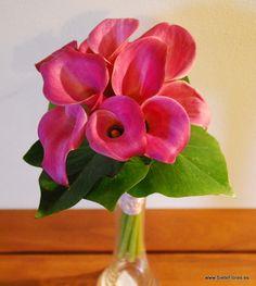 Ramo de Novia con calas rosas