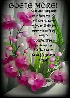 More Good Morning Prayer, Morning Prayers, Good Morning Good Night, Good Morning Wishes, Lekker Dag, Evening Greetings, Afrikaanse Quotes, Goeie More, Night Messages