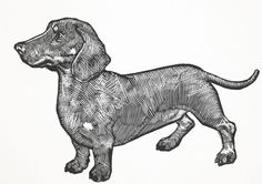 Linoleum Block Print of Dachshund by foggyturtle on Etsy
