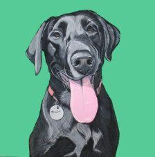 Домашние животные в Портреты на заказ - Etsy Искусство