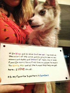 Finally+someone+adopted+this+blind+husky+puppy...+And+this+is+how+we+send+her+to+America