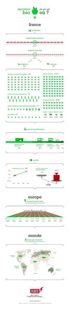 Infographie l'agriculture bio en France (Organic Farming)