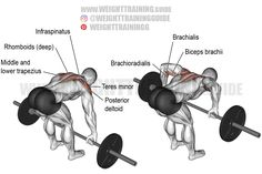 Exercise name: Barbell rear delt row. Target muscle: Posterior Deltoid. Synergists: Infraspinatus, Teres Minor, Lateral Deltoid, Middle and Lower Trapezius, Rhomboids, Brachialis, and Brachioradialis. Dynamic stabilizer: Biceps Brachii. Mechanics: Compound. Force: Pull. Good Back Workouts, Back Exercises, Shoulder Exercises, Back And Biceps, Back Muscles, Plank Workout, Workout Guide, Weight Training Workouts, Exercise Workouts