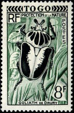 Togo goliath beetle stamp, 1955 More about #stamps: http://sammler.com/stamps/ Mehr über #Briefmarken: http://sammler.com/bm