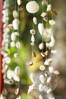 hanging shell decoration ilove this i want this hanging all over with all the lights