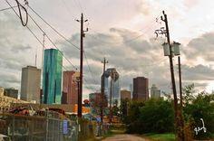 City Power Wilderness