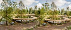 The Houston Arboretum's Revamped Woodway Entrance Is Open Houston Date Ideas, Walking The Plank, Nature Center, Edible Plants, Native Plants, Garden Bridge, Habitats, Pond, Entrance