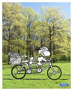 Snoopy and Woodstock out for a bike ride Woodstock Snoopy, Snoopy Love, Peanuts Cartoon, Peanuts Snoopy, Woodstock Pictures, Sanrio, Charlie Brown Cafe, Snoopy Family, Minions