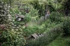 © bysahlia.com Gmunden Austria, Arch, Outdoor Structures, Garden, Plants, Graphics, Longbow, Garten, Lawn And Garden