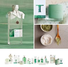 Thymes Studio Collection on Behance
