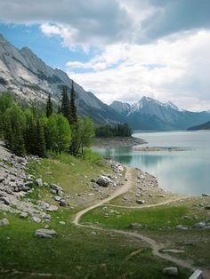"Jasper National Park in Alberta, Canada - 500px / Photo ""The Path"" by Lori R"