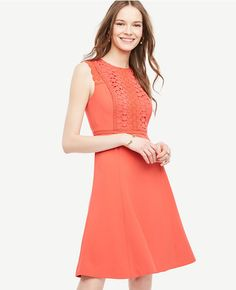 Primary Image of Lace Trim Flare Dress