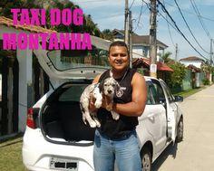 TAXI DOG MONTANHA TRANSPORTE DE ANIMAIS NO RIO DE JANEIRO: DE RIO DO OURO para VARGEM PEQUENA