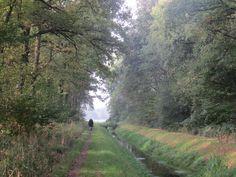 2014-09-28 Lekker wandelen langs een schone beek, ideaal om de hond te water te laten