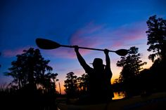 On New Orleans Kayak Swamp Eco-Tours you will explore the beauty of the swamps tours and plantations tours with small groups led by local eco-guides. Book online now! New Orleans Swamp Tour, Pearl River, Kayak Tours, French Quarter, Small Groups, Books Online, Kayaking, Wildlife, Explore
