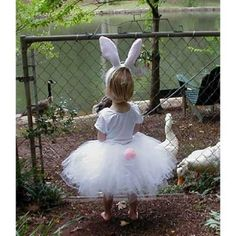Here comes Peter Cottontail.....