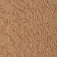 Brazilian Lacewood (sealed)