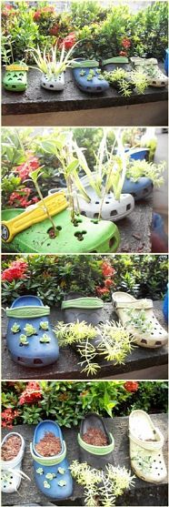 Old and worn-out Crocs repurposed as planters!  Everyone has an old pair of these somewhere....