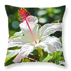 "Healthy Hibiscus Throw Pillow by Flamingo Graphix John Ellis. Available in many formats, sizes and prices. Note: watermark ""Fine Art America"" will not appear on final print."