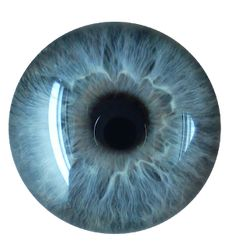 I Love Your Eyes (poem) - News - Bubblews Eyeball Images, Blue Eyes Aesthetic, Eyes Clipart, Eye Lens Colour, People With Blue Eyes, Wolf Colors, Eye Colors, Eye Texture, Iris Eye