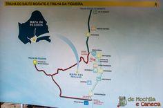 A trilha da Figueira e a trilha do Salto Morato.