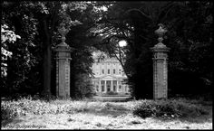 Ickworth, Suffolk. View of rotunda through Building Plantation, August 1979