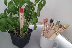 Jak vyrobit keramická zapichovátka k bylinkám   návod Plants, Plant, Planets