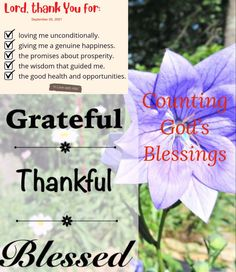 Counting God's Blessings. #GratefulThankfulBlessedSunday Lord, thank your for: