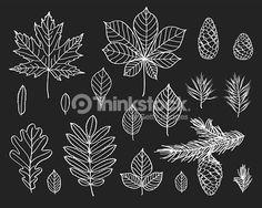 autumn chalkboard draw - Cerca con Google