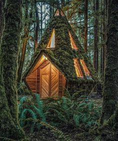 This cabin in the woods looks greatYou can find Little cabin and more on our website.This cabin in the woods looks great Tyni House, Tiny House Cabin, Cabin Homes, Cabin In The Woods, Lost In The Woods, Cottage In The Woods, Forest Cabin, Forest House, A Frame Cabin
